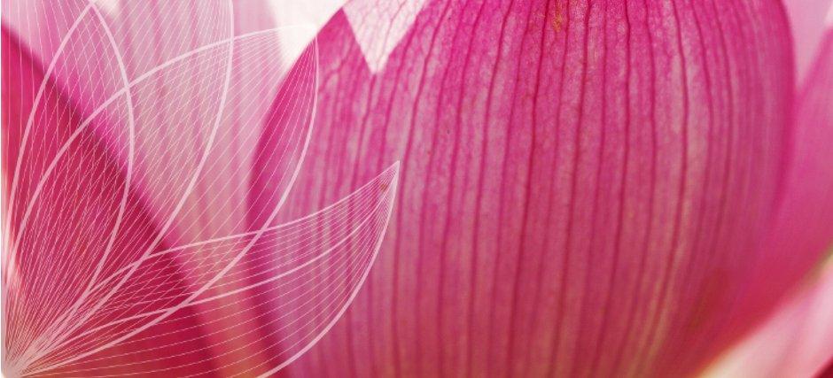 Rückblick Yoga Nidra Ausbildung 2017